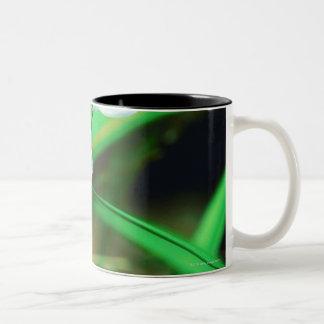 23873200 Two-Tone COFFEE MUG