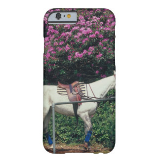 23893981 FUNDA DE iPhone 6 BARELY THERE