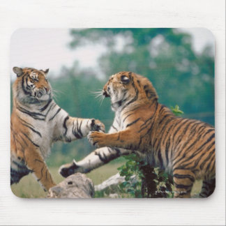 23899157 MOUSE PAD
