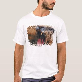 23899234 T-Shirt