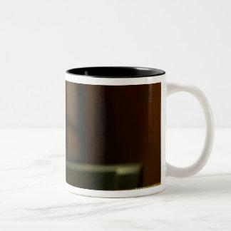 23966397 Two-Tone COFFEE MUG