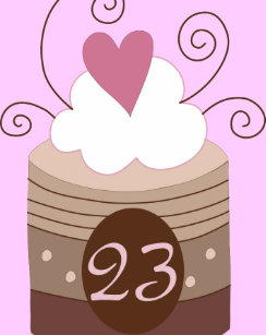 23rd Birthday Gift Ideas For Her Adult Apron