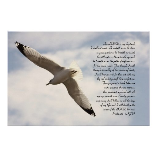23ro Verso bíblico del salmo con la gaviota altísi Poster