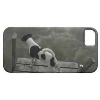 24073561 iPhone SE/5/5s CASE