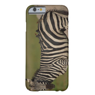 24109277 BARELY THERE iPhone 6 CASE