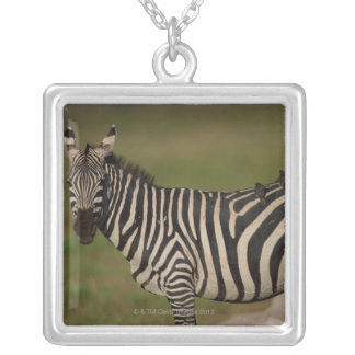24109277 SILVER PLATED NECKLACE