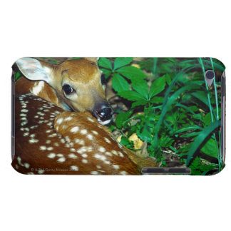 24114390 BARELY THERE iPod CASE