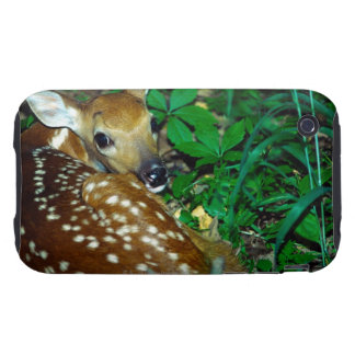 24114390 iPhone 3 TOUGH COVERS
