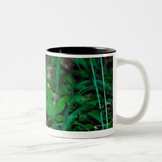 24114390 Two-Tone COFFEE MUG