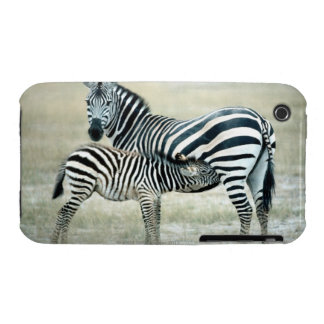 24114480 iPhone 3 COVER