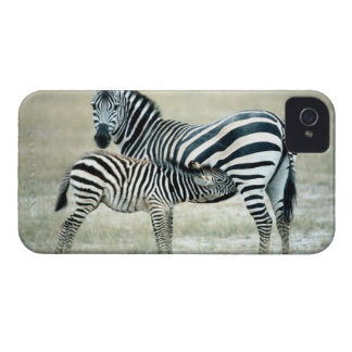 24114480 iPhone 4 Case-Mate CASES
