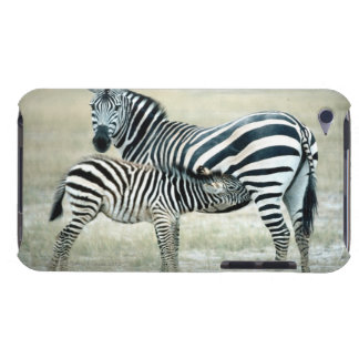 24114480 iPod TOUCH CASES