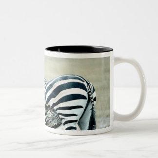 24114480 Two-Tone COFFEE MUG