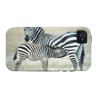 24114480 VIBE iPhone 4 CASE