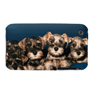 24117057 iPhone 3 COVER