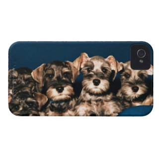 24117057 iPhone 4 COVERS