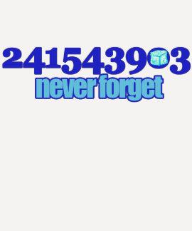 241543903 PLAYERAS