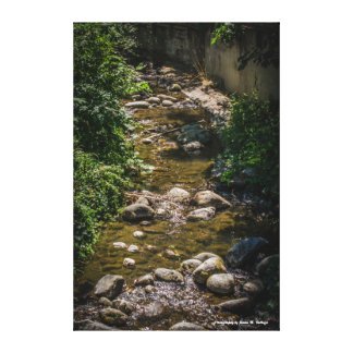 24 x 36 Ashland Creek in Lithia Park Gallery Wrap Canvas