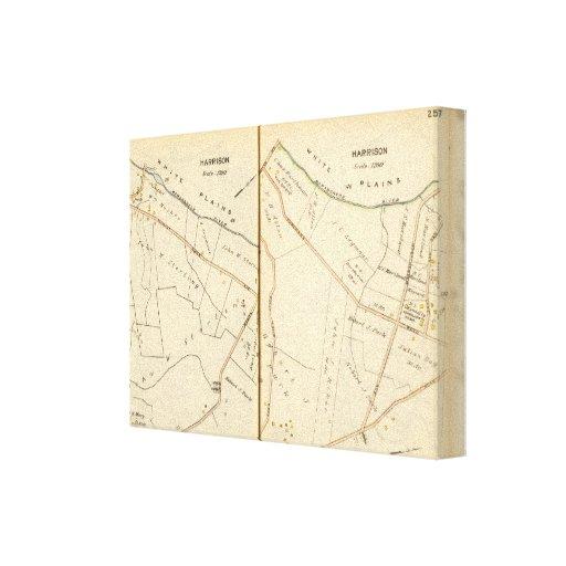 256257 Harrison Gallery Wrap Canvas