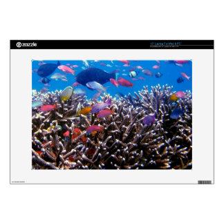 """256563 TROPICAL COLORFUL FISH SEALIFE OCEAN CORAL 15"""" LAPTOP SKINS"""