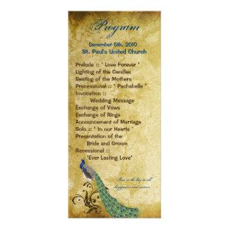 25 4x9 Wedding Program Peacock Vintage Feathers Rack Card Design