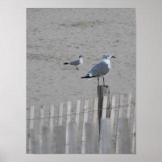 25 5 de la playa poster