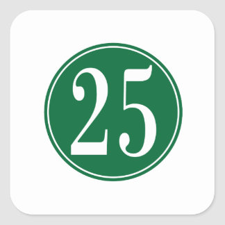 #25 Green Circle Square Sticker