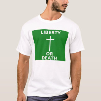 265px-Arklowflag_svg1798 T-Shirt