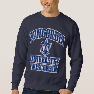 267a3822-d sweatshirt