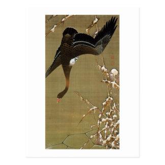 26. 芦雁図, 若冲 Wild Goose, Jakuchū, Japan Art Postcard