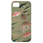 27. 諸魚図, diversos pescados del 若冲, Jakuchū, arte iPhone 5 Funda