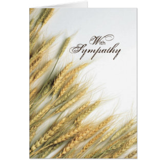 2843 Resurrection and Life Sympathy Cards