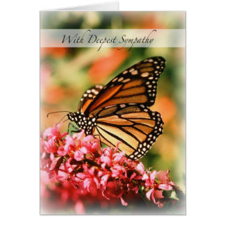 2844 Monarch Butterfly Sympathy Greeting Cards