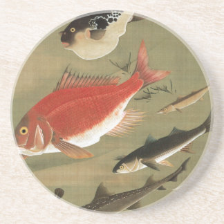 28. 群魚図, 若冲 Various Fishes, Jakuchū, Japan Art Drink Coaster