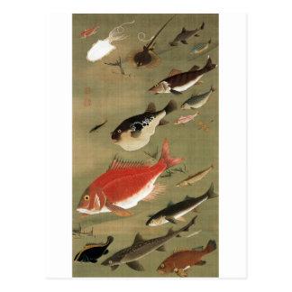 28. 群魚図, 若冲 Various Fishes, Jakuchū, Japan Art Postcard