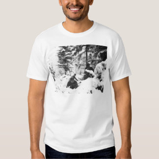 290th American Regiment in the Battle of the Bulge T Shirt