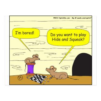295 hide and squeak cartoon postcard
