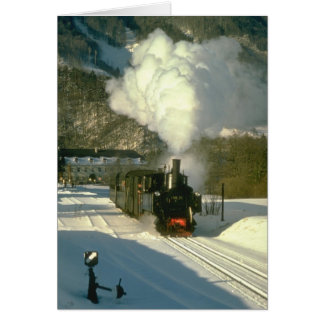 298.25 leaves Leonstein with a train for Molin Greeting Cards