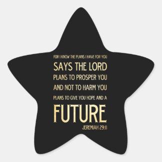 29:11 cristiano de Jeremiah del arte del verso de Pegatina En Forma De Estrella