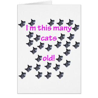 29 cabezas del gato viejas tarjeta de felicitación