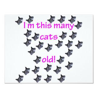 "29 Cat Heads Old 4.25"" X 5.5"" Invitation Card"