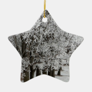 2-26-13 random winter pics 064.JPG Double-Sided Star Ceramic Christmas Ornament