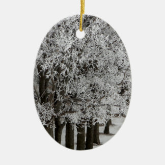 2-26-13 random winter pics 064.JPG Double-Sided Oval Ceramic Christmas Ornament