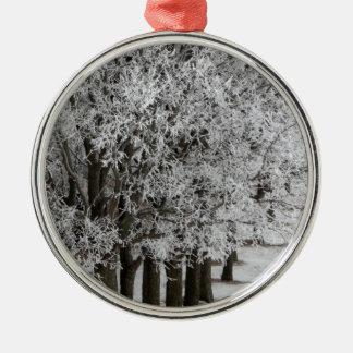 2-26-13 random winter pics 064.JPG Round Metal Christmas Ornament