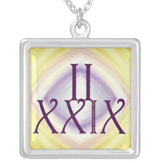 2 29 in Roman Numerals Silver Plated Necklace