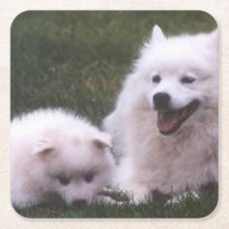 2 American_Eskimo_Dogs Square Paper Coaster