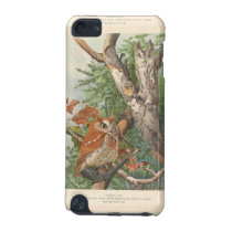 2 angry vintage owls in a tree iPod touch 5G case