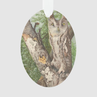 2 angry vintage owls in a tree ornament