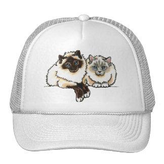 2 Birman Trucker Hat