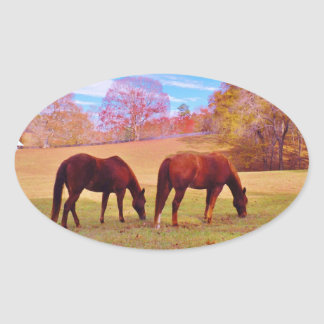 2 Brown horses in a colored field Oval Sticker